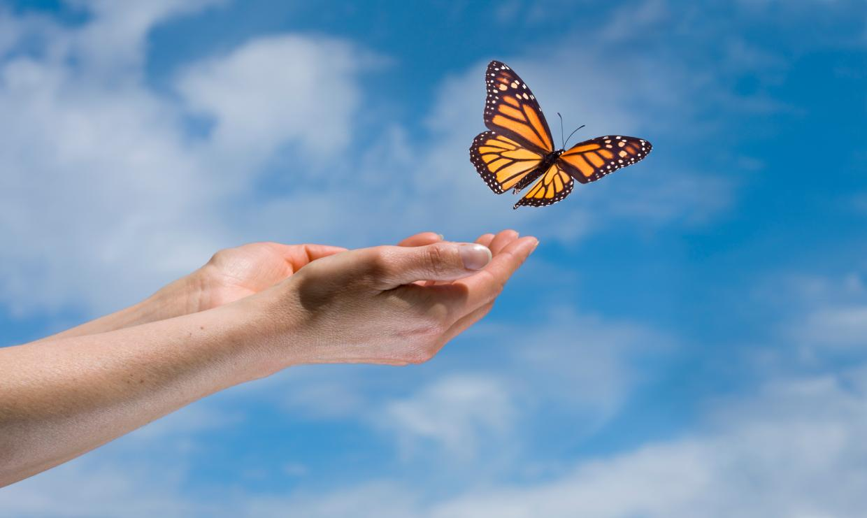 Transforming Your Belief Systems